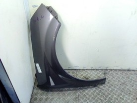 PARAFANGO ANT. DX. RENAULT SCENIC 2A SERIE (06/03-08/09) F9QD8 8200020569