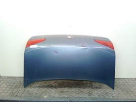 COFANO POST. PEUGEOT 607 (09/00-12/04) DW12TED4 8701L2